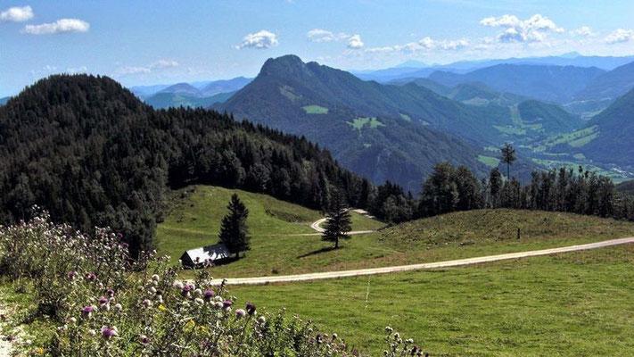 Aufstieg vom Wanderparkplatz in einem langen Grashang zur Anton Schosser Hütte. Blick über das Ennstal und den Schieferstein bis zum Ötscher