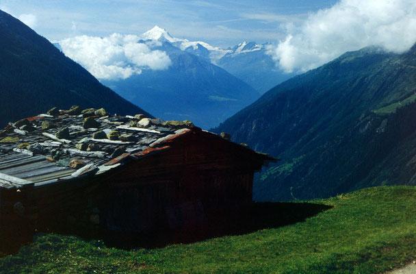 Das 4500 m hohe Weißhorn in den Walliser Alpen vom Lötschentaler Höhenweg