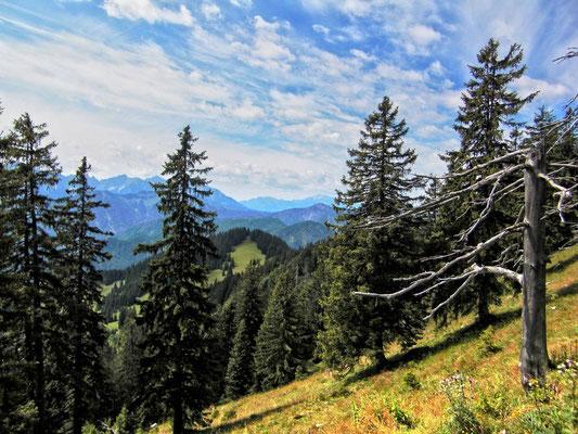 Blick zum Sengsengebirge.