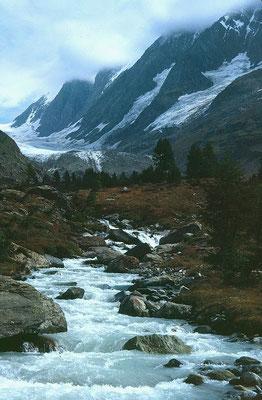 Langgletscher mit Gletschertor und Lötschenlücke