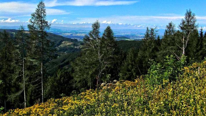 Alpenvorland und Höhenzüge des Böhmerwalds am Horizont
