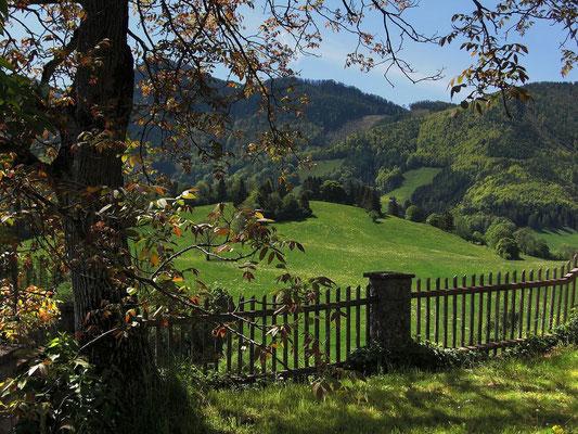 Blick in die landschaftlich reizvolle Umgebung von Frauenstein
