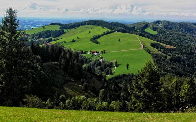 Sicht über das Alpenvorland zum Böhmerwald