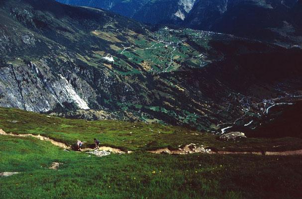 Blick vom Höhenweg ins Fieschertal