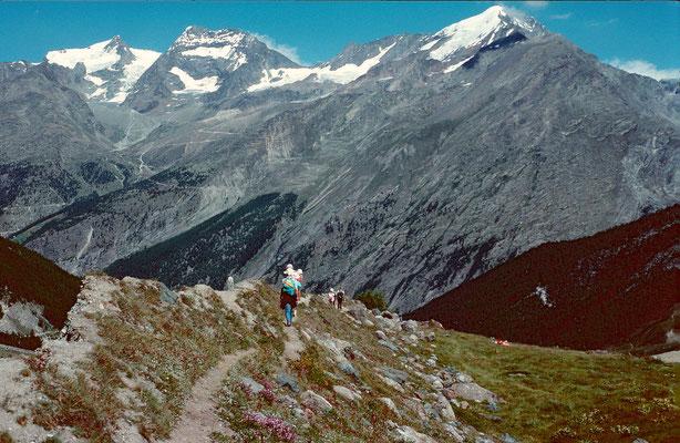Bergpfad am Spielboden mit Blick zur Weissmiesgruppe