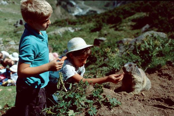 Elke und Thomas beim Fuettern eines zutraulichen Murmeltiers.