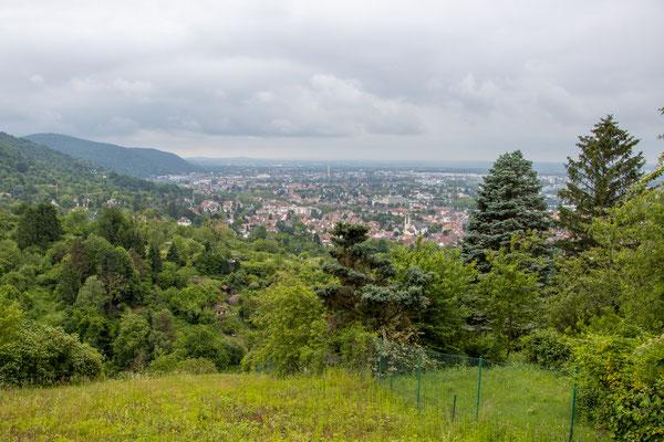 Ausblick auf Handschuhsheim (Foto: B. Budig)
