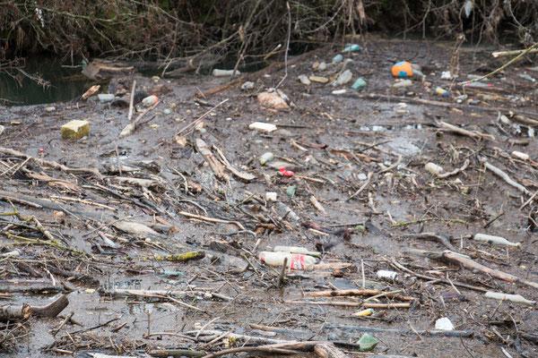 Müll-Teppich auf der Elsenz in Nahaufnahme