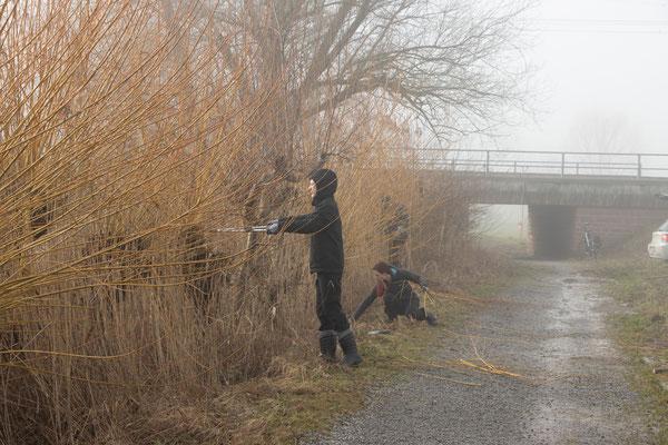 Mit Astscheren im Einsatz (Foto: B. Budig)