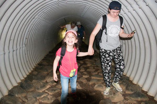 Weg durch den Wassertunnel unter der Panzerringstraße /Foto: B. Budig