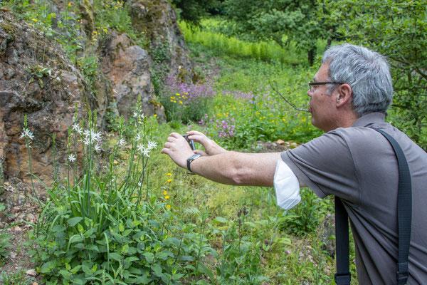 Was sagt Flora incognita dazu? (Foto: B. Budig)