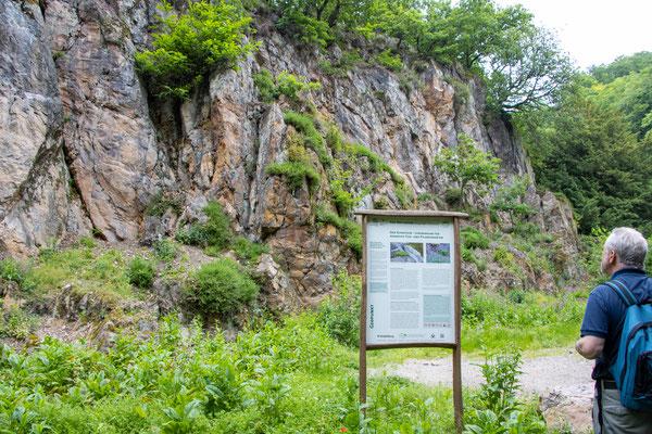 Ehemaliger Rhyolith-Steinbruch (Foto: B. Budig)