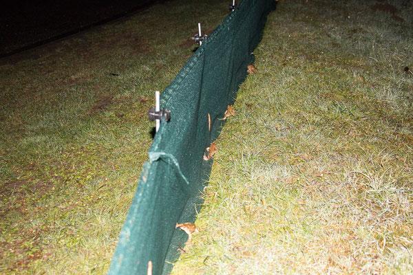 Der Zaun erfüllt seinen Zweck (Foto: B. Budig)