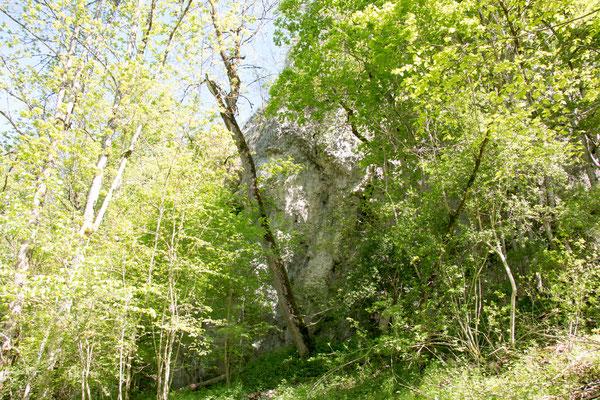 Rappenfelsen 672 m ü. N. N. /Foto: B. Budig