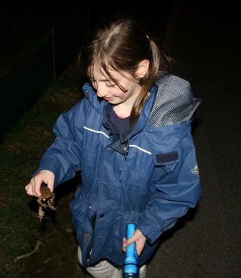 Laura setzt eine Erdkröte um (Foto: R. Drös)