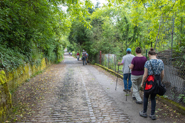 steiniger und abschüssiger Weg zum Handschuhsheimer Friedhof (Foto: B. Budig)