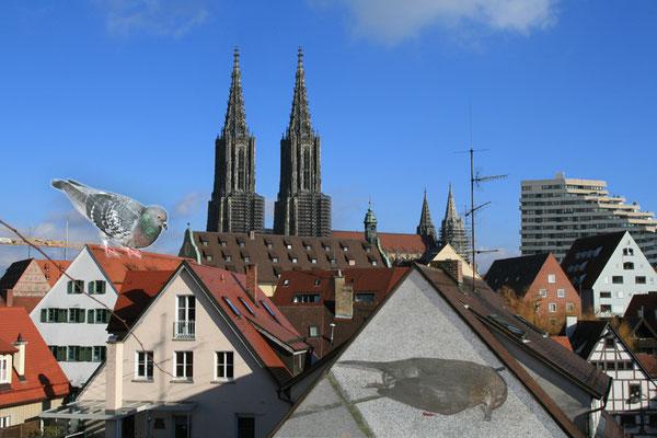 artblow - GEORG HIEBER: Ulm?