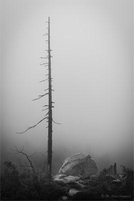 """""""Drei Sessel"""" Region / Bayerischer Wald"""