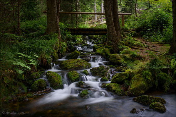Kleine Ohe / Bayerischer Wald