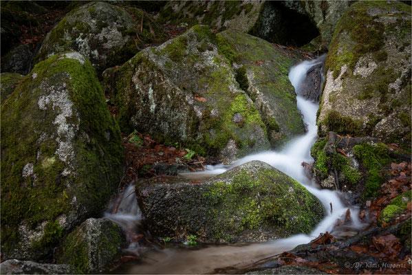 kleiner Wasserlauf bei Triberg (Schwarzwald)
