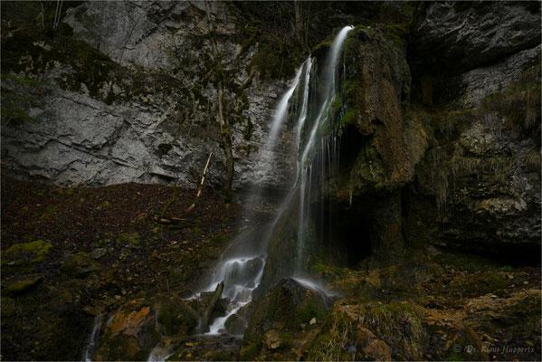 Tannegger Wasserfall  /  Schwarzwald