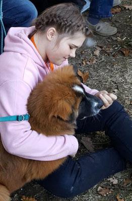Foto: Annika Wagner.Junghund-Bespaßung