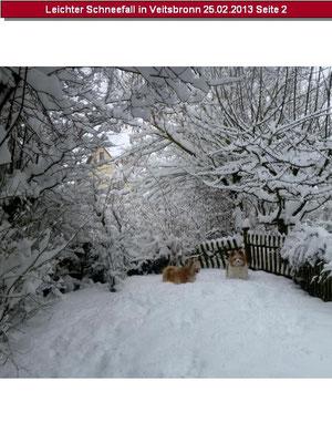 ...es hat wunderbar geschneit...