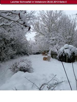 ...von dem Wintermärchen :-).