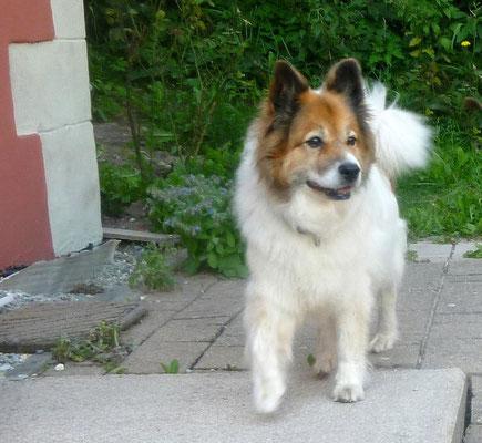 Die 12jhrige Dina von Werths Echte war zu Besuch...