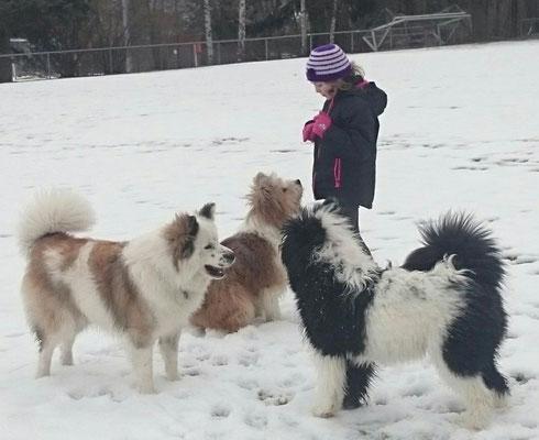 Kinderhund