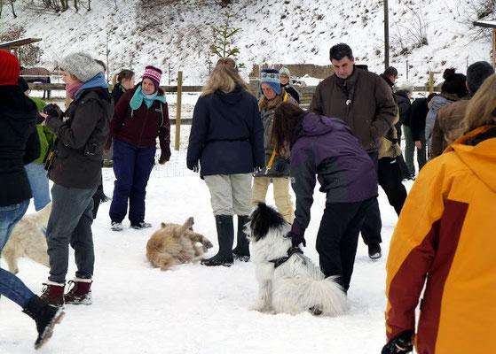Und alle hier ausgebildeten Hundetrainer mit sicherem Blick Dinge geschehen lassen, oder mal beherzt eingreifen, wenn denn nötig.