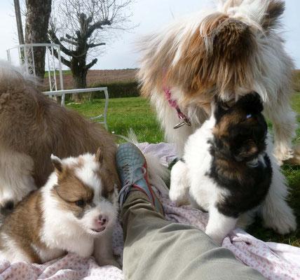 """Pookie kann ab jetzt als """"liebe Tante"""" mit ihnen spielen."""