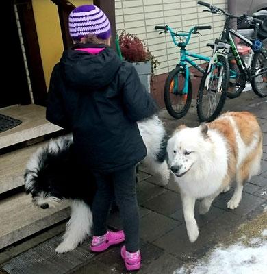 Lpf-Hund