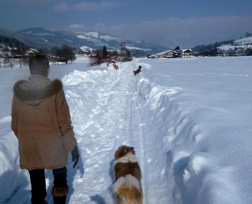 Wunderschön der Spaziergang...