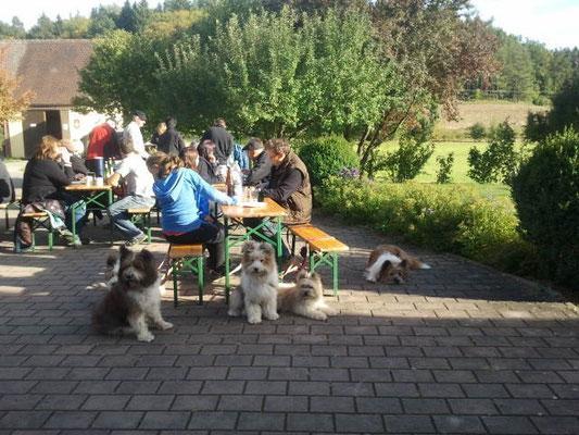 Nach einem schönen Spaziergang mit dem Dorfverein Oberdombach.