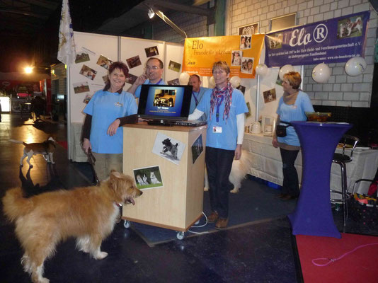 Ende März hatte die EZFG e.V. (Elo Zucht- und Forschungsgemeinschaft e.v.) einen Stand auf der Heimtiermesse in München...