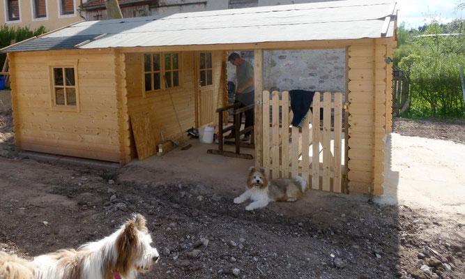 Das Alpakahaus wächst.