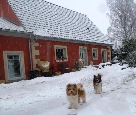 Weiter geht es im Schnee....