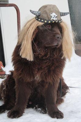 ...über den Wikinger-Hund Ghandi hatten alle ihren Spaß...