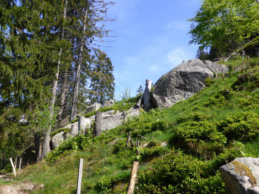 Granitbrocken im Weidfeld  Copyright Hartmut Hermanns