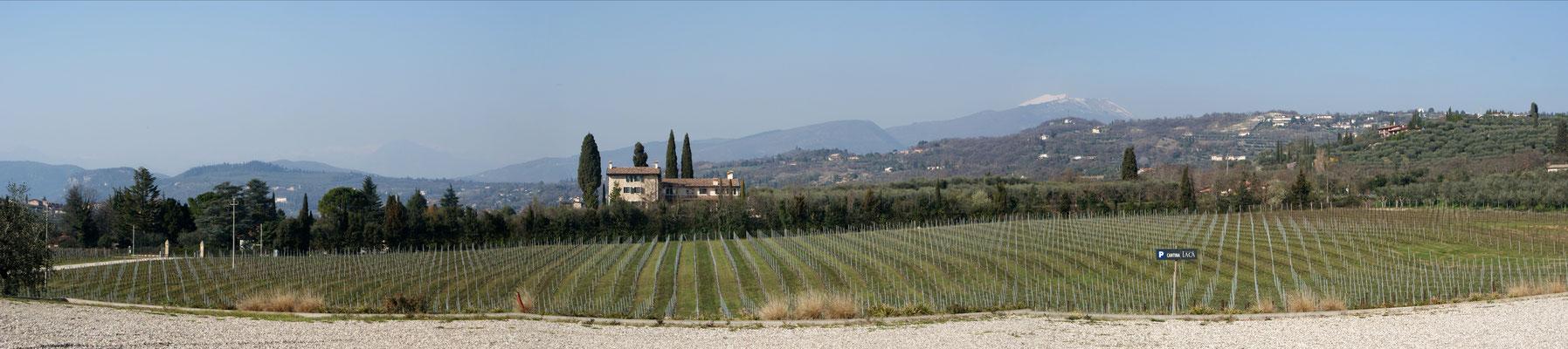Weingut Laca Bardolino