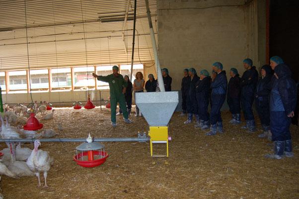 von Tierarzt Dr. Dieter Schulze erhielt die Besuchergruppe im Putenstall von Cord Börger viele Informationen zur Zucht, Putenmast und dem Gesundheitsschutzprogramm.