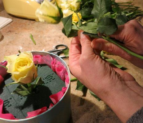 Rosen schräg anschneiden und mit der Mitte beginnen.