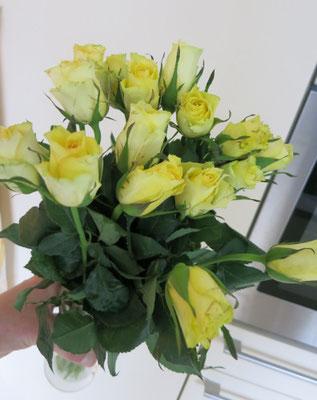 Die Rosen in handwarmes Wasser einstellen, so dass sie sich mit wasser vollsaugen.