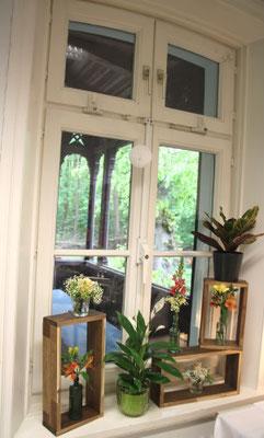 Dekorahmen aus Holz mit Grünpflanzen und kleinen Rosen in Glasgefäßen auf der Fensterbank.
