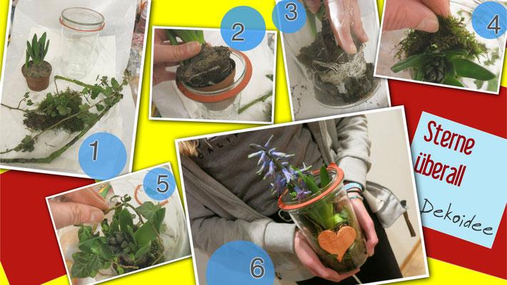 DIY - Schritte, wie du ein kleines Gärtchen Pflanzt