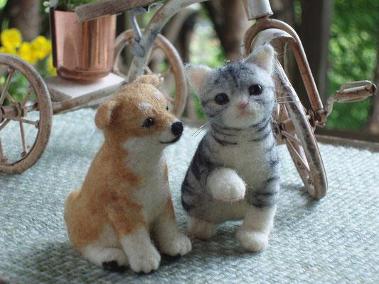 仔犬と仔猫
