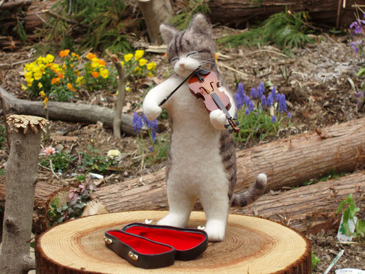 ヴァイオリンを弾くねこ