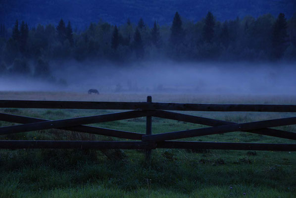 Wells Gray Guest Ranch im Morgennebel