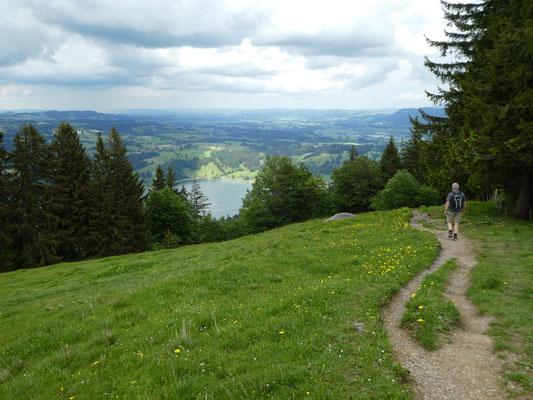 Abstieg von der Alpe Geschwenderberg